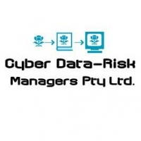 Cyber Data-Risk Managers