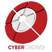 Cybercrowd