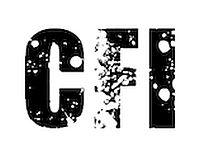 Cyber Forensic & Investigation (CFI)