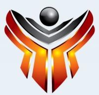 Hawk Network Defense