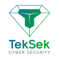 TekSek Cyber Security
