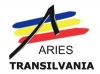 Romanian Association for Electronic Industry & Software (ARIES)