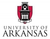 Cybersecurity Defense Initiative (CDI) - University of Arkansas