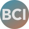 Bace Cybersecurity Institute (BCI)