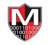 Maven Security Consulting