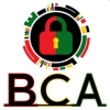 Black Cybersecurity Association (BCA)